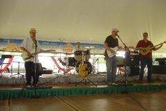 The Swamp Kings perform