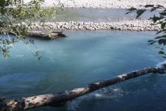 Blue water Of Hoh River