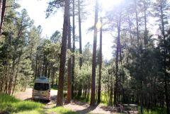 Campsite, Custer State Park