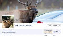 Deby Dixon Facebook