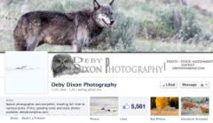 Deby Dixon Facebook page