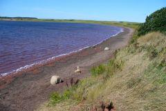 Darnley Basin at Twin Shores CG