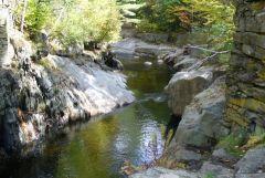 Maine Foliage Trip