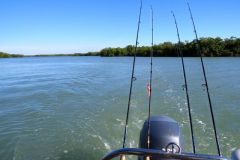 Fishin backwaters