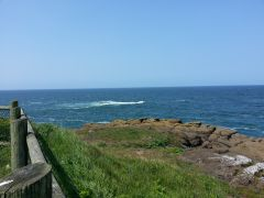 More on the Pacific Coast of Oregon