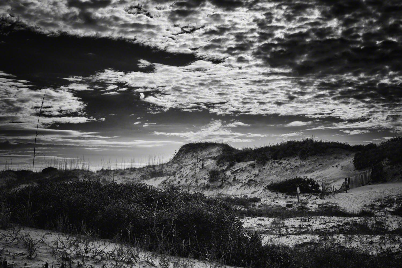 Grayson Beach Landscape 6