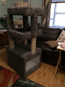 Cat Tree 2.JPG