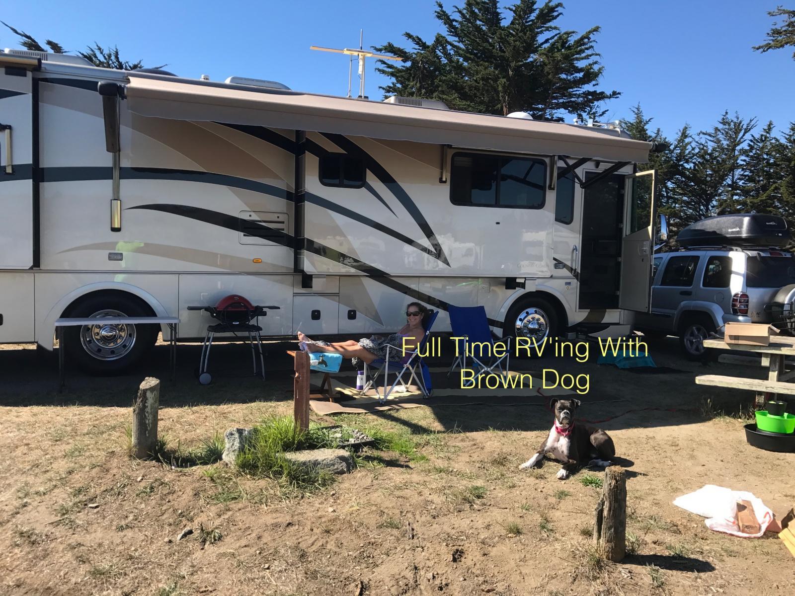 Dan, Lori and Kane (Brown Dog)