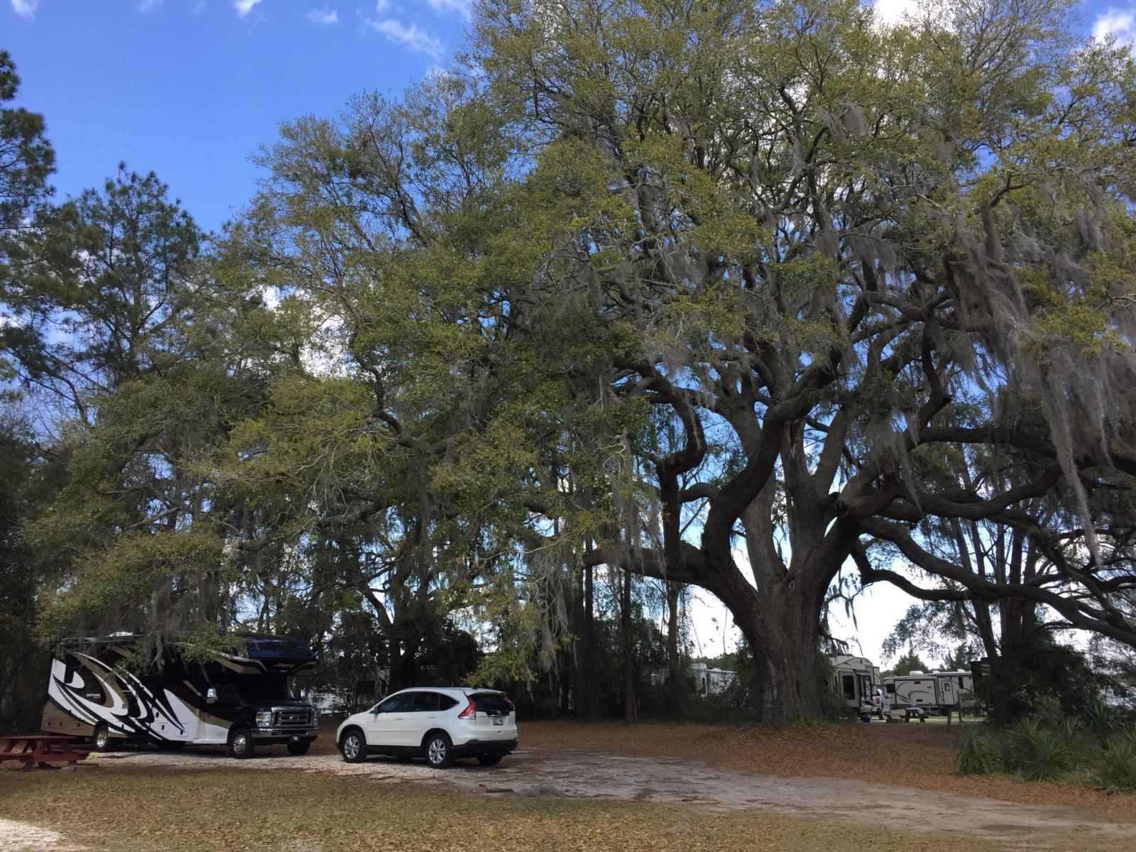 Red Gate RV Park, Savannah GA