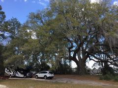 Red Gate RV Park, Savannah GA