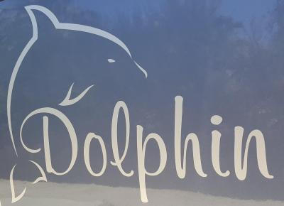 dolphin_logo.jpg